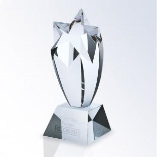 Rising Star Award - Clear Base